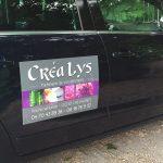 Plaque aimantée voiture : la sélection des bitonios les plus funs